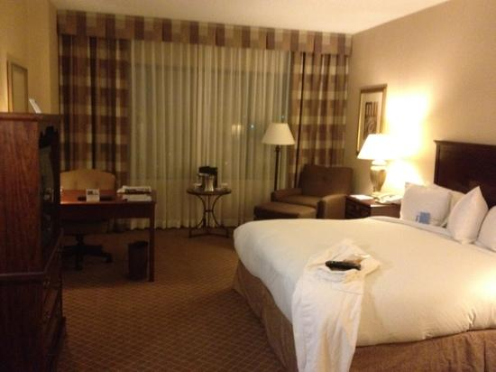 Hilton Greenville: Room