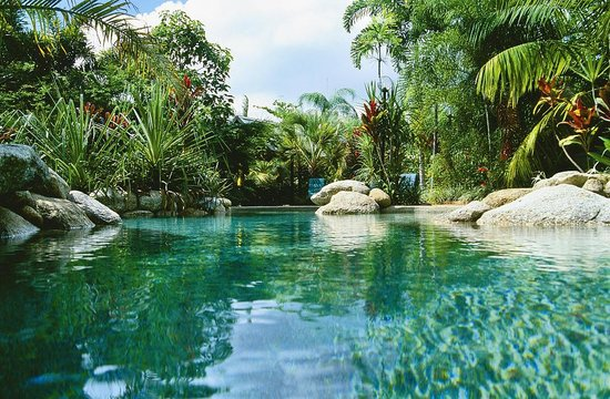 Kewarra Beach Resort & Spa : Lagoon style pool set amoungst the rainforest gardens