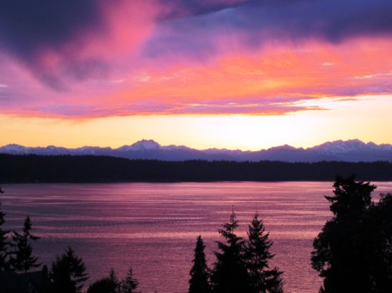 Olympic View Bed and Breakfast Cottage: The sunsets are amazing.