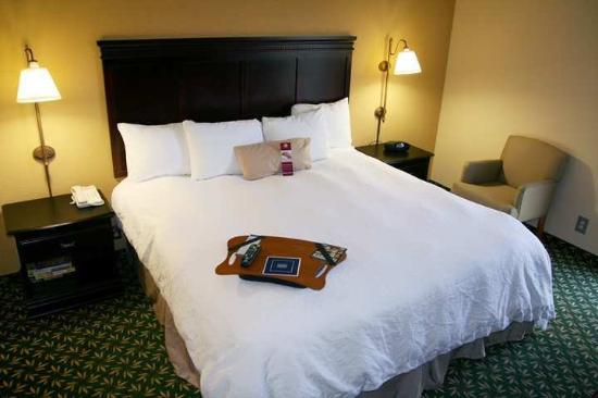 Hampton Inn Dallas/Ft. Worth Airport South