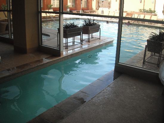 Great Indoor Outdoor Pool Picture Of Platinum Hotel And Spa Las Vegas Tripadvisor