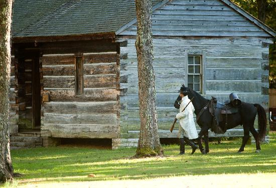 Tennessee: Cabin and Horse in TN