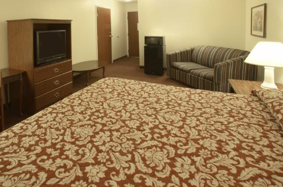 Americas Best Value Inn and Suites: King Standard 2