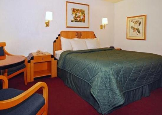 Comfort Inn at Ponderosa Pines: Guest Room