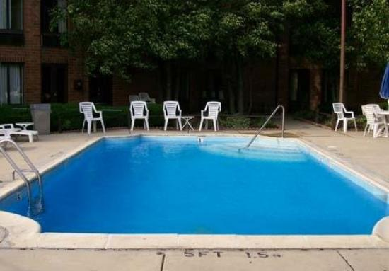 Comfort Inn Downers Grove: Pool