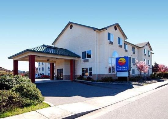 Photo of Comfort Inn & Suites Fortuna