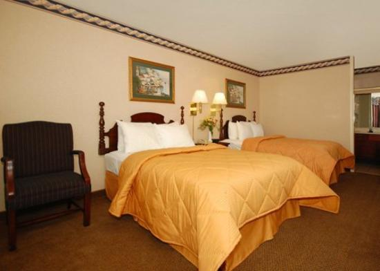 Comfort Inn: Guest Room