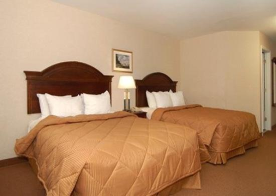Comfort Inn & Suites South Burlington: Guest Room