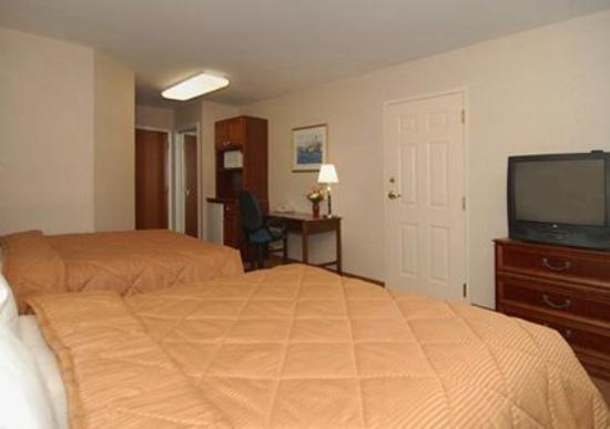 Comfort Inn & Suites South Burlington: Guest Room -OpenTravel Alliance - Guest Room-