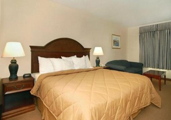 Comfort Inn & Suites South Burlington: Suite -OpenTravel Alliance - Suite-