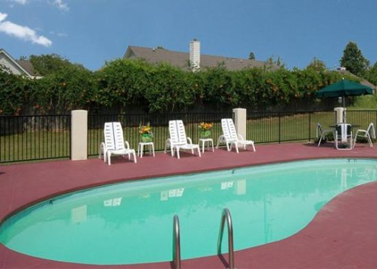 Comfort Inn Olive Branch: Pool