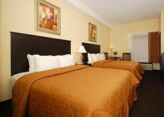 Comfort Inn South: Guest Room