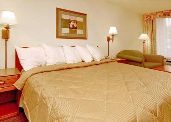 Comfort Inn Evergreen: Single