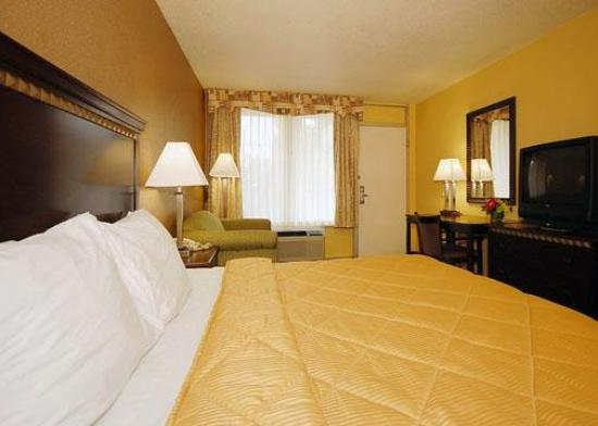 Comfort Inn Evergreen: One Bed
