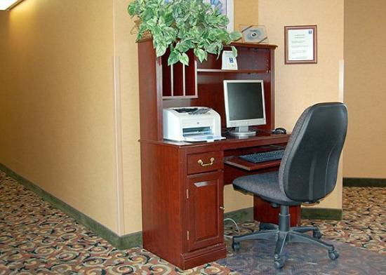 Comfort Inn at the Zoo : Business Center