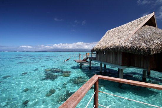 Sofitel Moorea Ia Ora Beach Resort: Over water bungalows