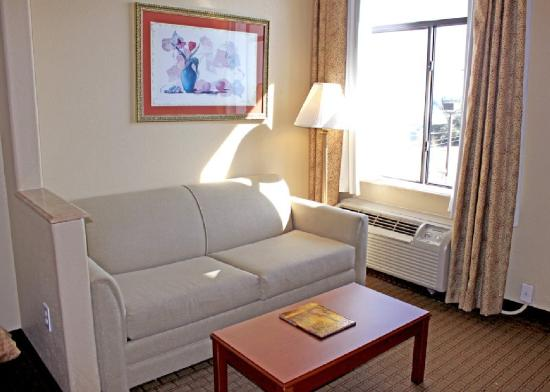 Comfort Suites Downtown South: Sitting
