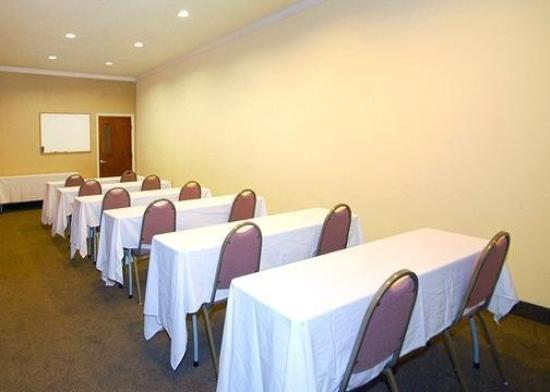 Comfort Suites Aggieland: Meeting Room