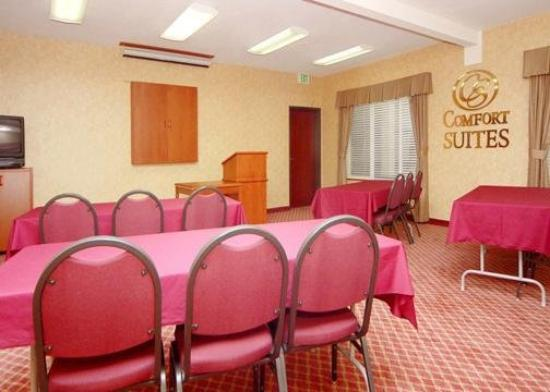Comfort Suites Southwest: Meeting Room