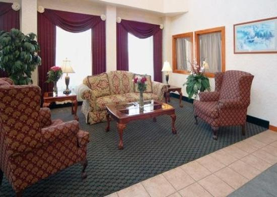 Comfort Suites Auburn Hills: Lobby