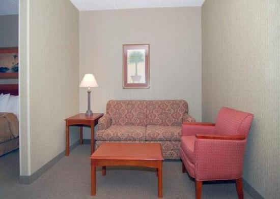 Comfort Suites Charlotte Northlake: Recreation Room