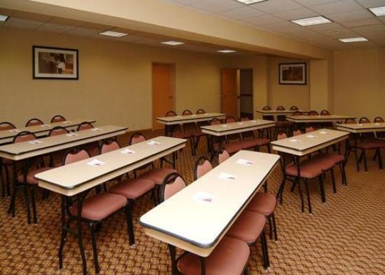 Comfort Suites San Angelo: Meeting Room
