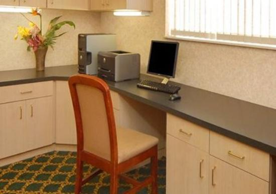 Comfort Suites Park Central: Business center