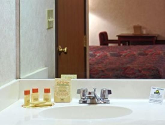 Dallas Days Inn Farmers Branch: Bathroom