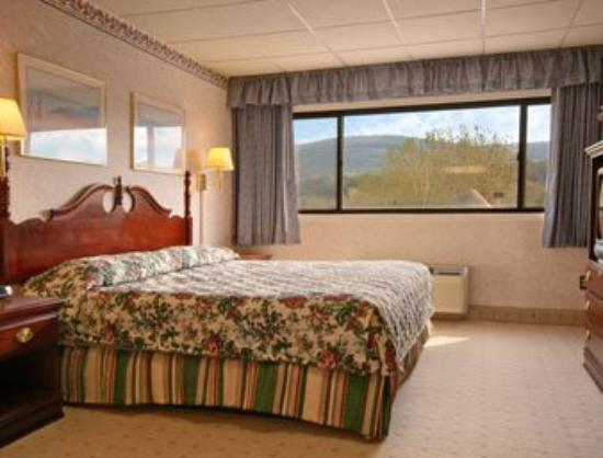 Quality Inn near Mountain Creek: Standard King Bed Room