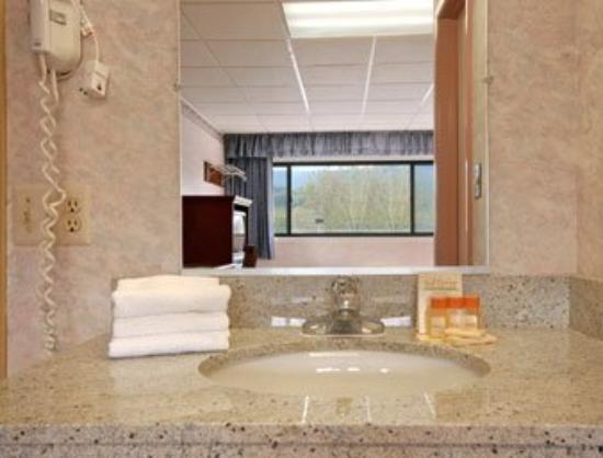 Quality Inn near Mountain Creek: Bathroom