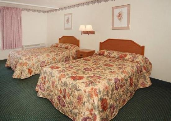 Econo Lodge Stone Mountain: Guest Room
