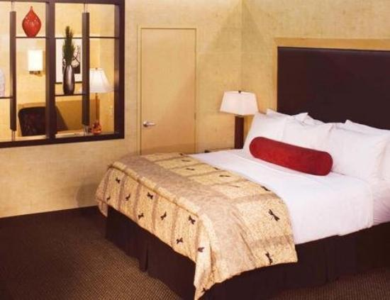 Cambria Suites Appleton: Guest Room