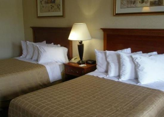 Quality Inn Troutville: Guest Room