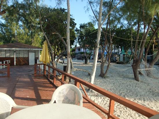 Coral Harbour Beach House and Villas: From the Beach Bar