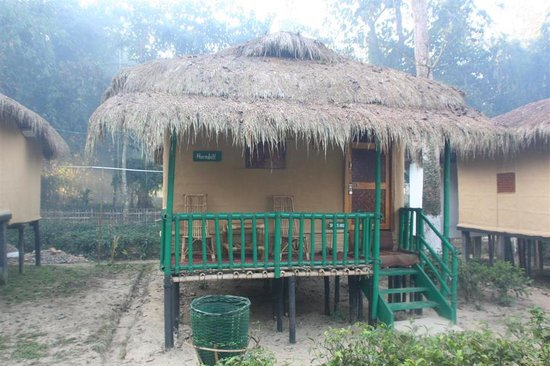 Nature-Hunt Eco Camp Kaziranga: cottage