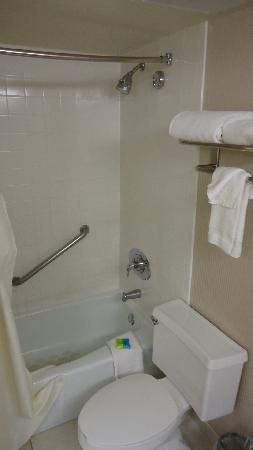 Radisson Hotel Lubbock Downtown: Tub & Toilet