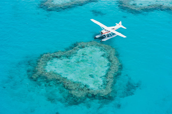 Heart Reef In Hardy Lagoon Jpg