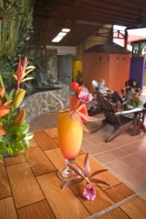 Turrialba Bed and Breakfast