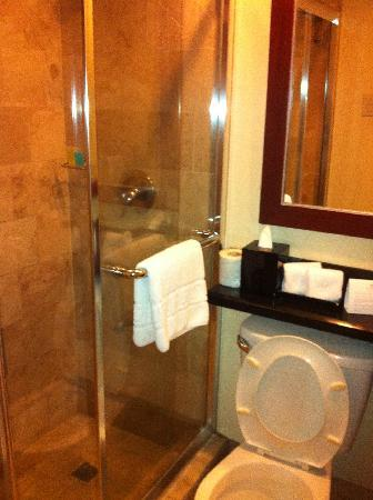 Somerset Olympia Makati: small toilet/shower in second bedroom