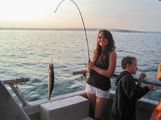 Holy mackerel catching fish on the odyssey picture of for Portland maine fishing