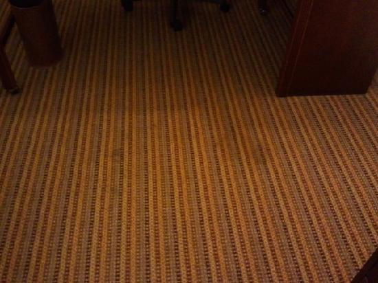 The Beverly Heritage Hotel: Some carpet stains