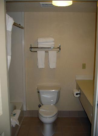 BEST WESTERN PLUS Twin View Inn & Suites: Best Western Bathroom