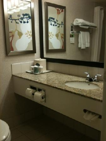 Wingate by Wyndham Calgary: bathroom