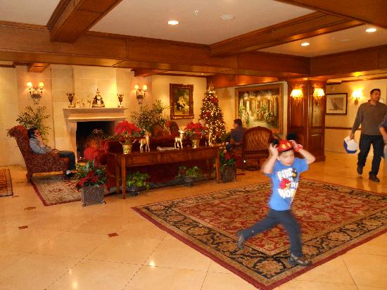 Ayres Hotel Anaheim: My rambuctious 5-yr old loved it