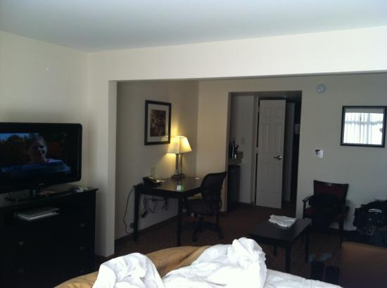Wingate by Wyndham State Arena Raleigh/Cary: desk sitting area