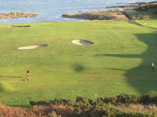 Photos of Crail Golfing Society - Balcomie and Craighead Courses, Crail