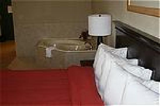 Country Inn & Suites Ithaca: whirlpool room