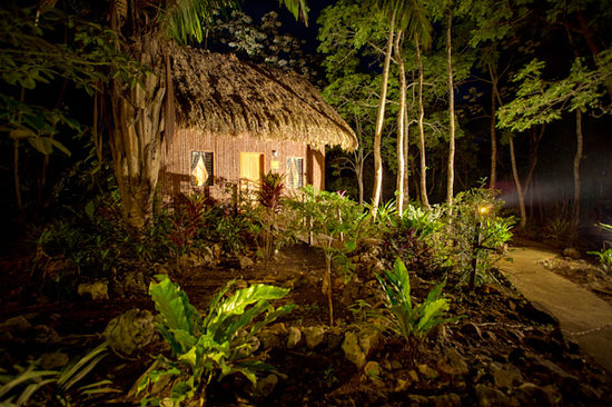 Mariposa Jungle Lodge: Exterior shot of our Cabanas