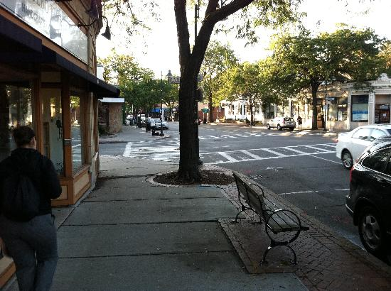 On the Park: typical brookline street scene