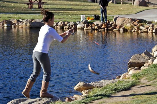 Trout haven fishing pond estes park reviews of trout for Fish pond supplies near me